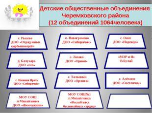 Детские общественные объединения Черемховского района (12 объединений 1064чел