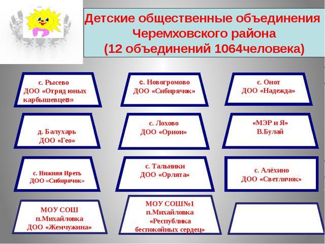 Детские общественные объединения Черемховского района (12 объединений 1064чел...