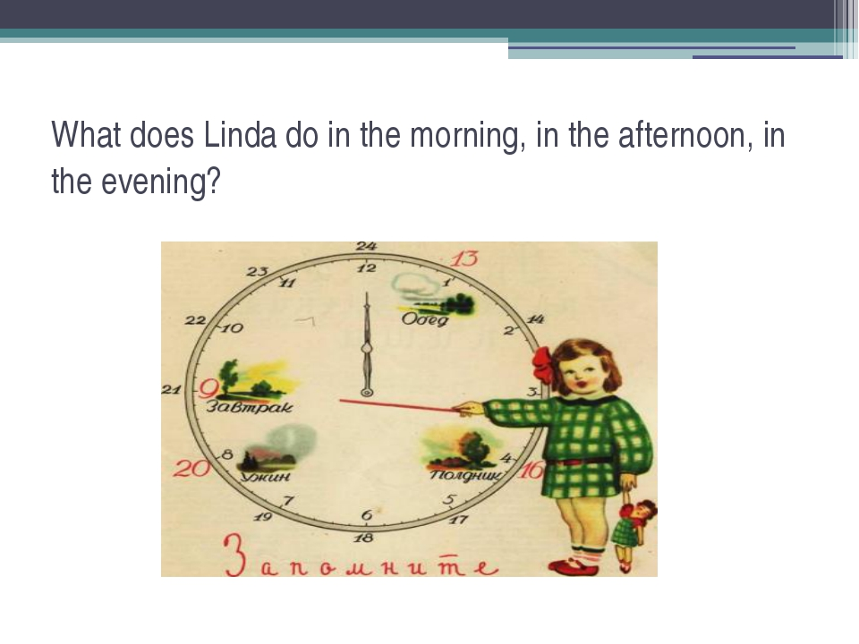 What does Linda do in the morning, in the afternoon, in the evening?
