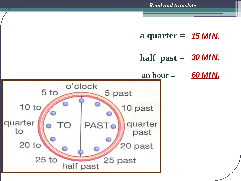 a quarter = half past = an hour = Read and translate: 60 MIN. 15 MIN. 30 MIN.