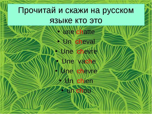 Прочитай и скажи на русском языке кто это une chatte Un cheval Une chevre Une...