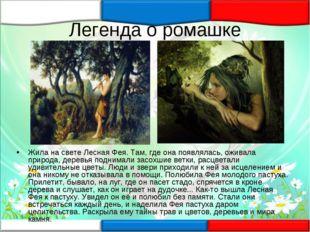 Легенда о ромашке Жила на свете Лесная Фея. Там, где она появлялась, оживала