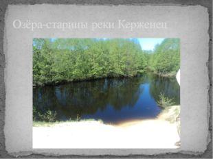 Озёра-старицы реки Керженец