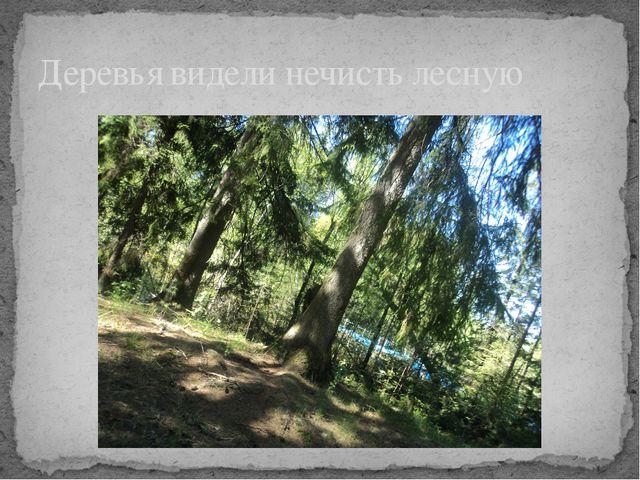 Деревья видели нечисть лесную