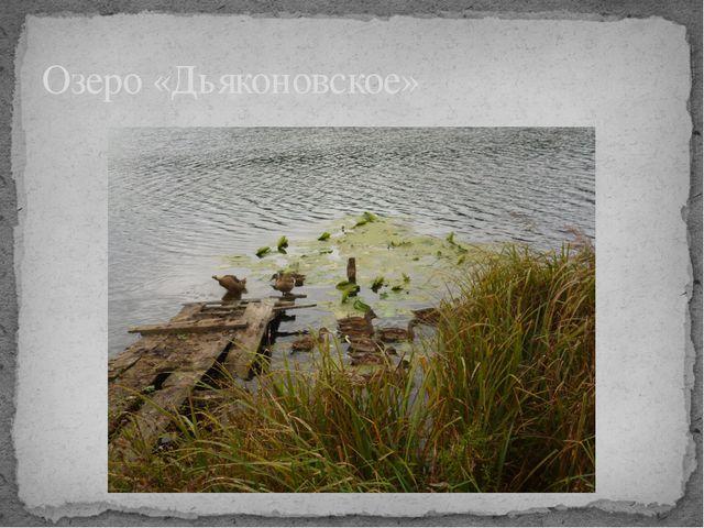 Озеро «Дьяконовское»