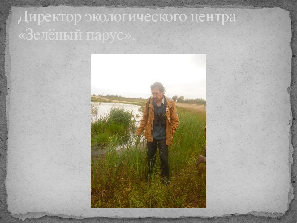 Директор экологического центра «Зелёный парус».