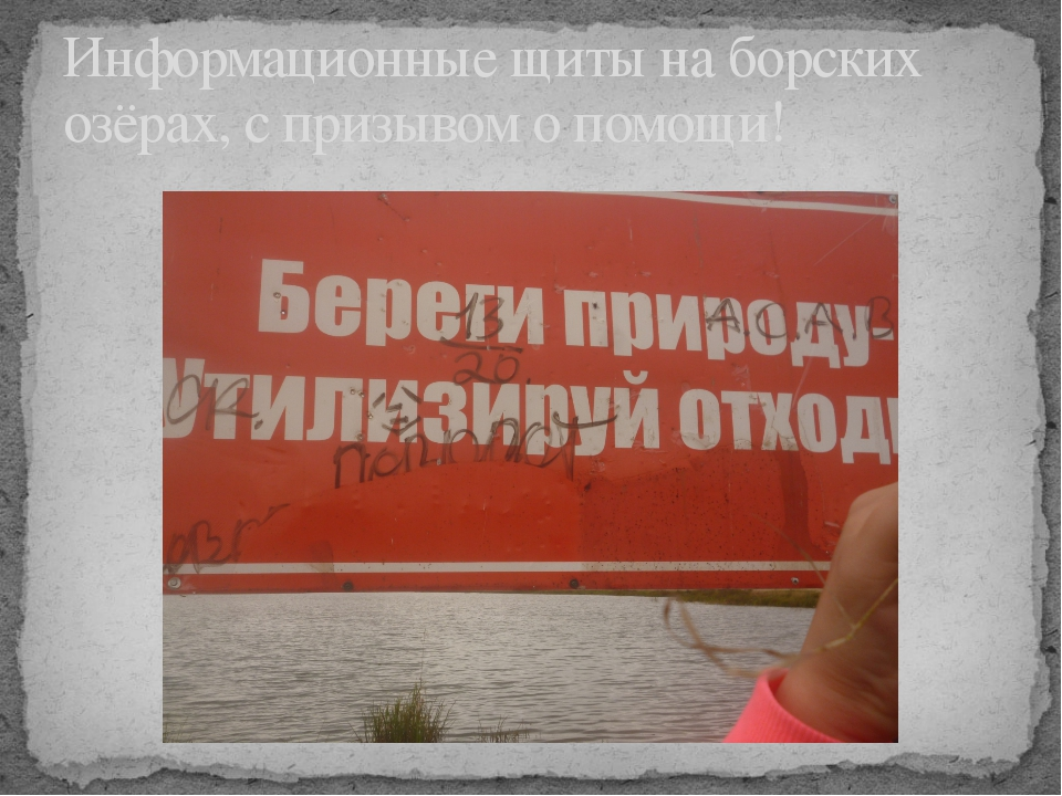 Информационные щиты на борских озёрах, с призывом о помощи!