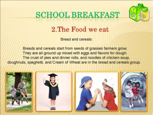 The Food we eat Bread and cereals: Breads and cereals start from seeds of gr