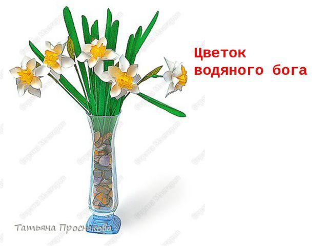 Цветок водяного бога