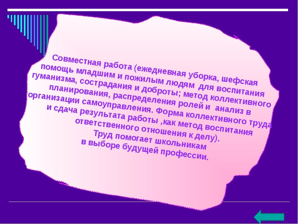 Совместная работа (ежедневная уборка, шефская помощь младшим и пожилым людям...