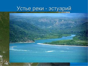 Устье реки - эстуарий