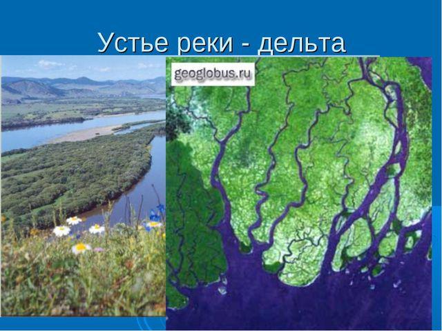 Устье реки - дельта