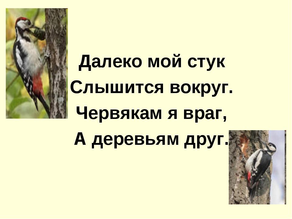 Далеко мой стук Слышится вокруг. Червякам я враг, А деревьям друг.