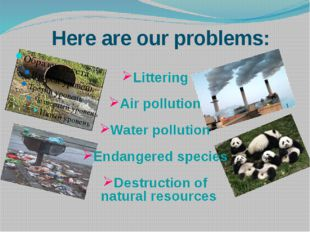 Here are our problems: Littering Air pollution Water pollution Endangered spe