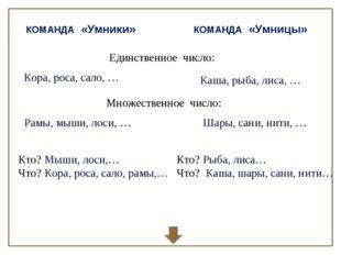 КОМАНДА «Умники» КОМАНДА «Умницы» Единственное число: Множественное число: Ко