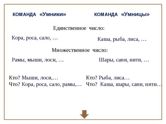 КОМАНДА «Умники» КОМАНДА «Умницы» Единственное число: Множественное число: Ко...