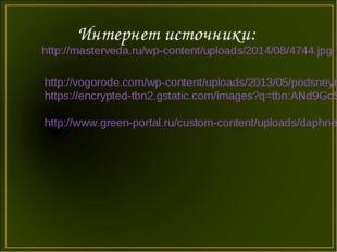 Интернет источники: http://masterveda.ru/wp-content/uploads/2014/08/4744.jpg