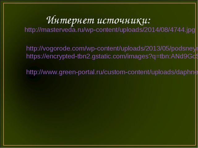 Интернет источники: http://masterveda.ru/wp-content/uploads/2014/08/4744.jpg...