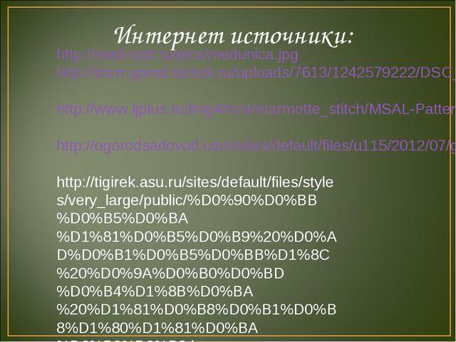 Интернет источники: http://med-rast.ru/pics/medunica.jpg http://shrrr.gorod.t...