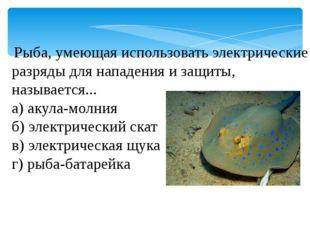 Рыба, умеющая использовать электрические разряды для нападения и защиты, наз
