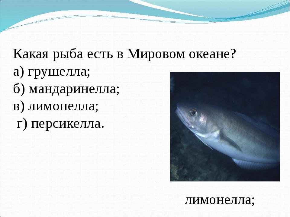 Какая рыба есть в Мировом океане? а) грушелла; б) мандаринелла; в) лимонелла;...