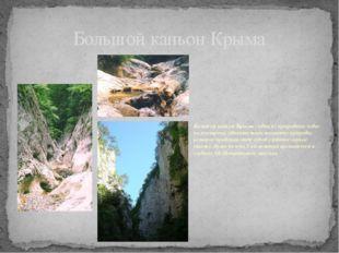 Большой каньон Крыма Большой каньон Крыма - одно из природных чудес полуостро