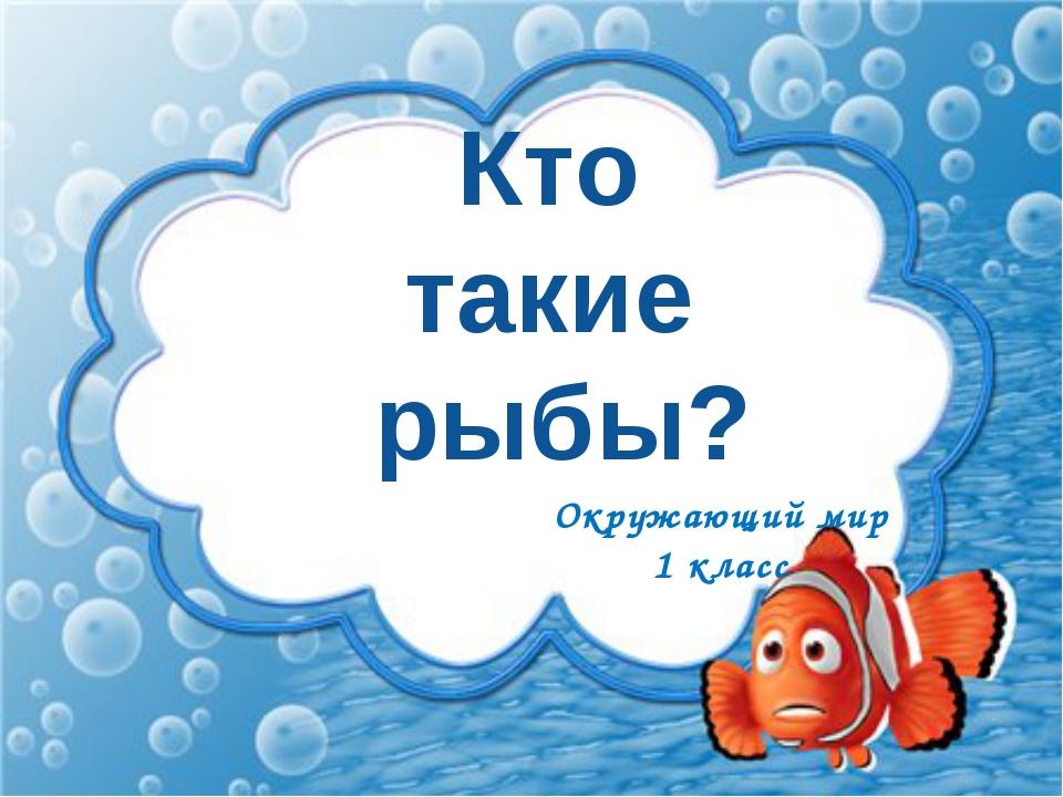 Кто такие рыбы? Окружающий мир 1 класс