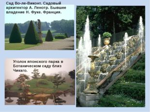 Уголок японского парка в Ботаническом саду близ Чикаго. Сад Во-ле-Виконт. Сад