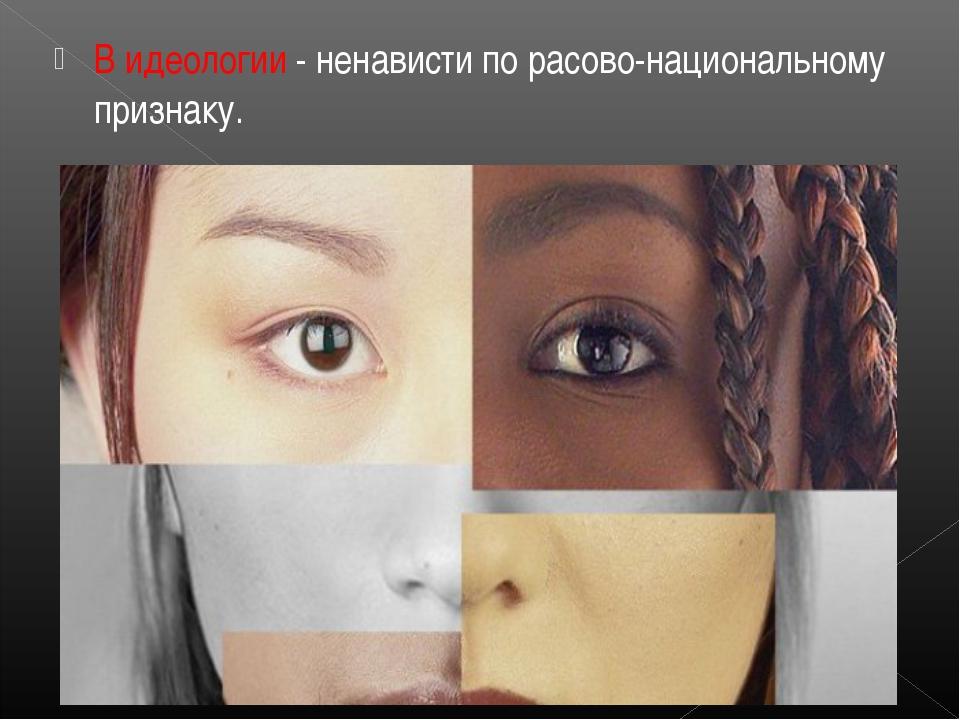 В идеологии - ненависти по расово-национальному признаку.