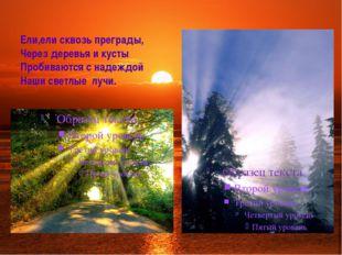 Ели,ели сквозь преграды, Через деревья и кусты Пробиваются с надеждой Наши св