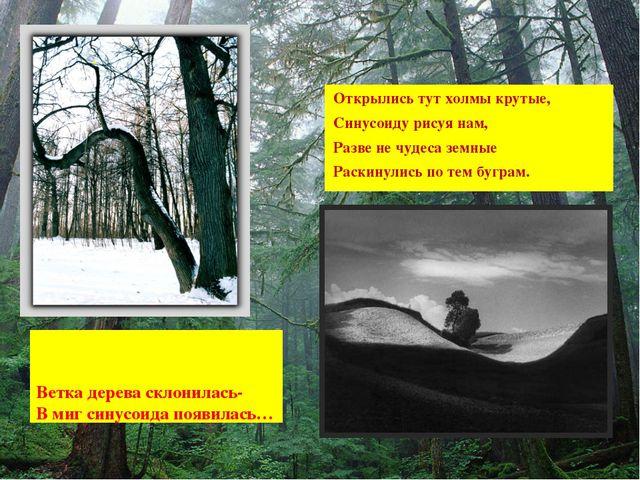 Ветка дерева склонилась- В миг синусоида появилась… Открылись тут холмы круты...