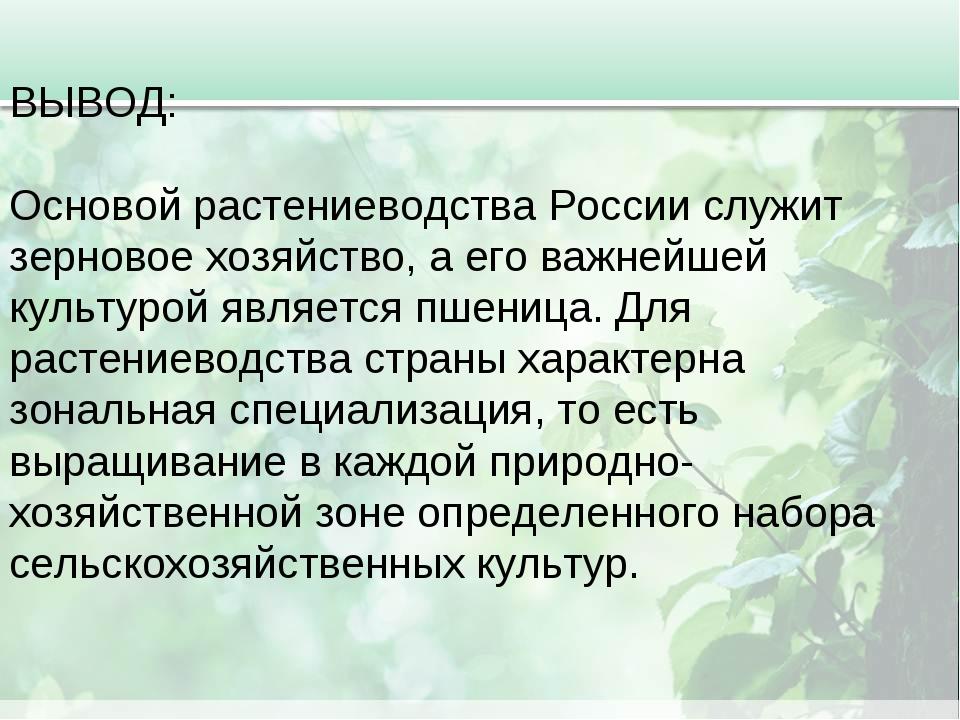 ВЫВОД: Основой растениеводства России служит зерновое хозяйство, а его важней...