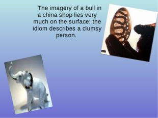 The imagery of a bull in a china shop lies very much on the surface: the idio