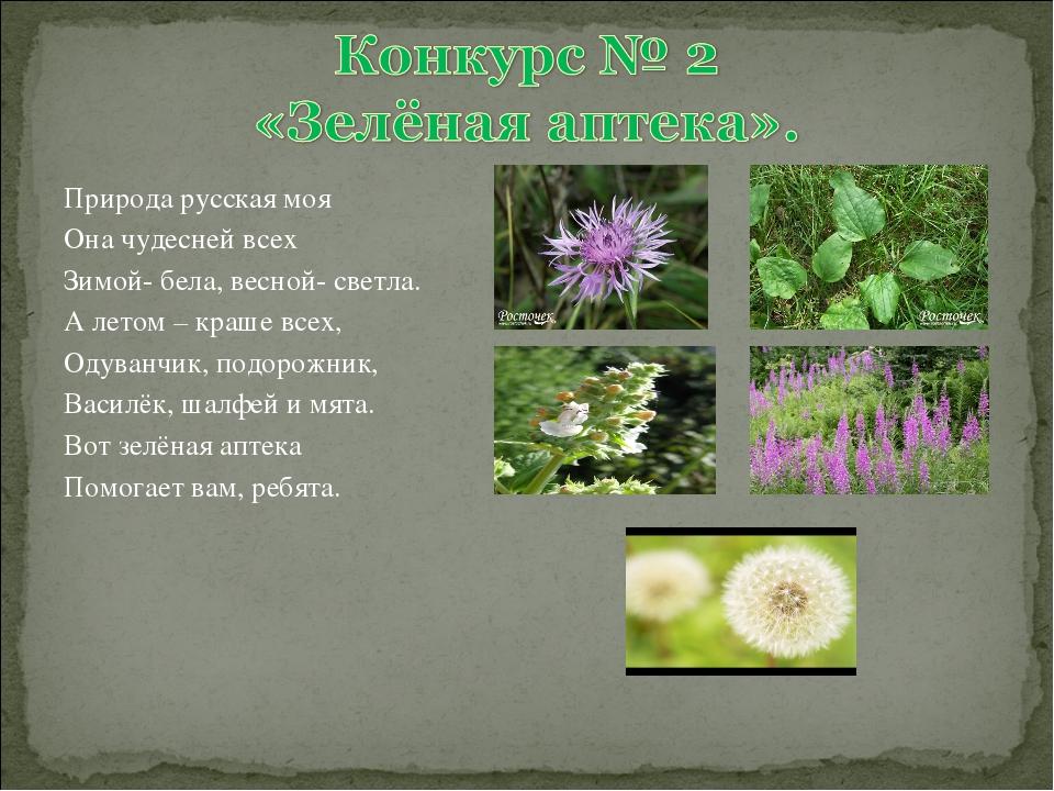 Природа русская моя Она чудесней всех Зимой- бела, весной- светла. А летом –...