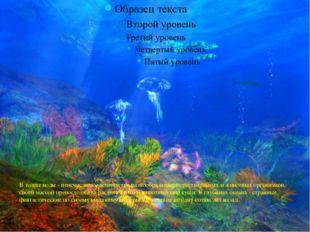 В толще воды - неисчислимое количество разнообразнейших растительных и животн