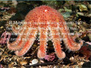 В Мировом океане обитает около 160 тыс. видов животных и около 10 тыс. видов