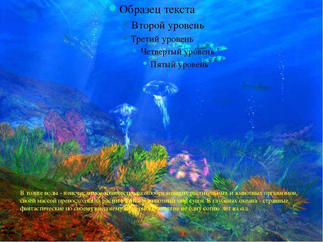 В толще воды - неисчислимое количество разнообразнейших растительных и животн...