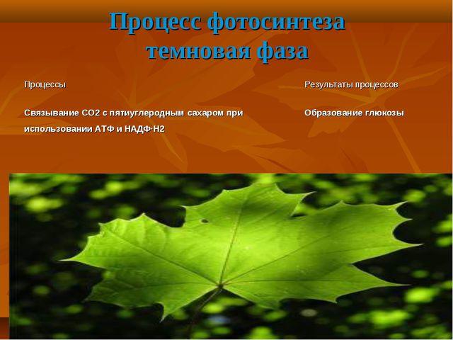 Процесс фотосинтеза темновая фаза Процессы Результаты процессов Связывание...