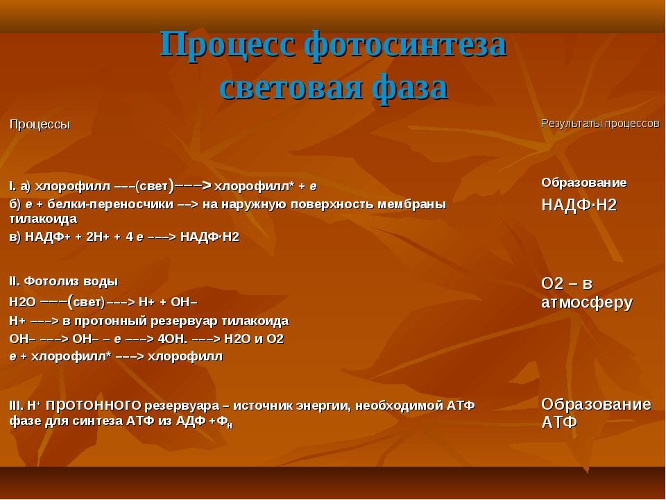 Процесс фотосинтеза световая фаза Процессы Результаты процессов I. а) хло...