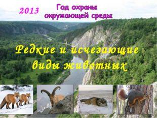2013 Редкие и исчезающие виды животных