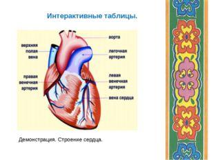 Интерактивные таблицы. Демонстрация. Строение сердца.
