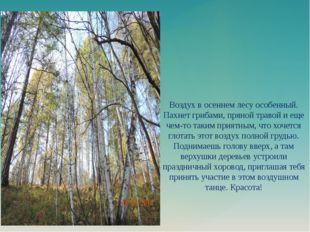 Воздух в осеннем лесу особенный. Пахнет грибами, пряной травой и еще чем-то т