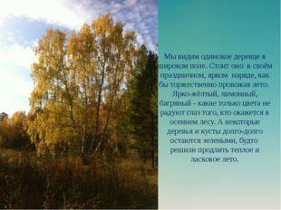 Мы видим одинокое деревце в широком поле. Стоит оно в своём праздничном, ярко