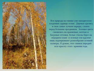 Вся природа на снимке уже находится во владениях царицы осени. Деревья оделис