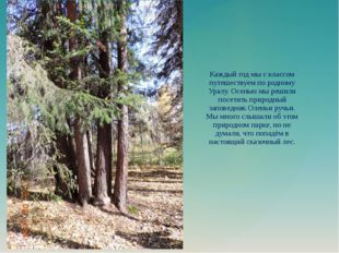 Каждый год мы с классом путешествуем по родному Уралу. Осенью мы решили посе