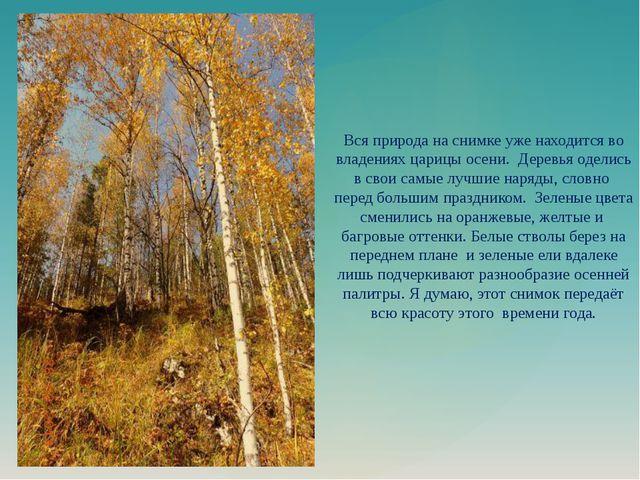 Вся природа на снимке уже находится во владениях царицы осени. Деревья оделис...