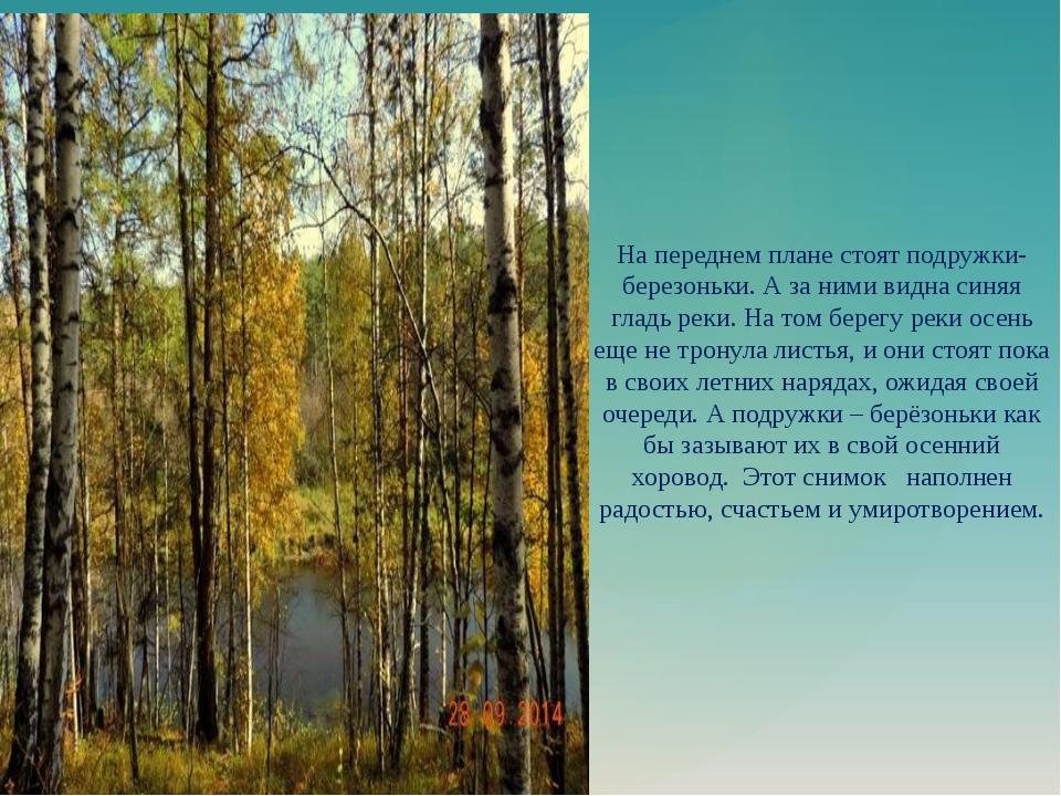 На переднем плане стоят подружки-березоньки. А за ними видна синяя гладь реки...