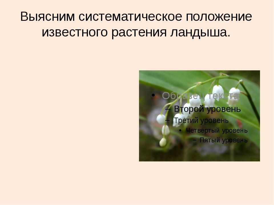 Выясним систематическое положение известного растения ландыша.