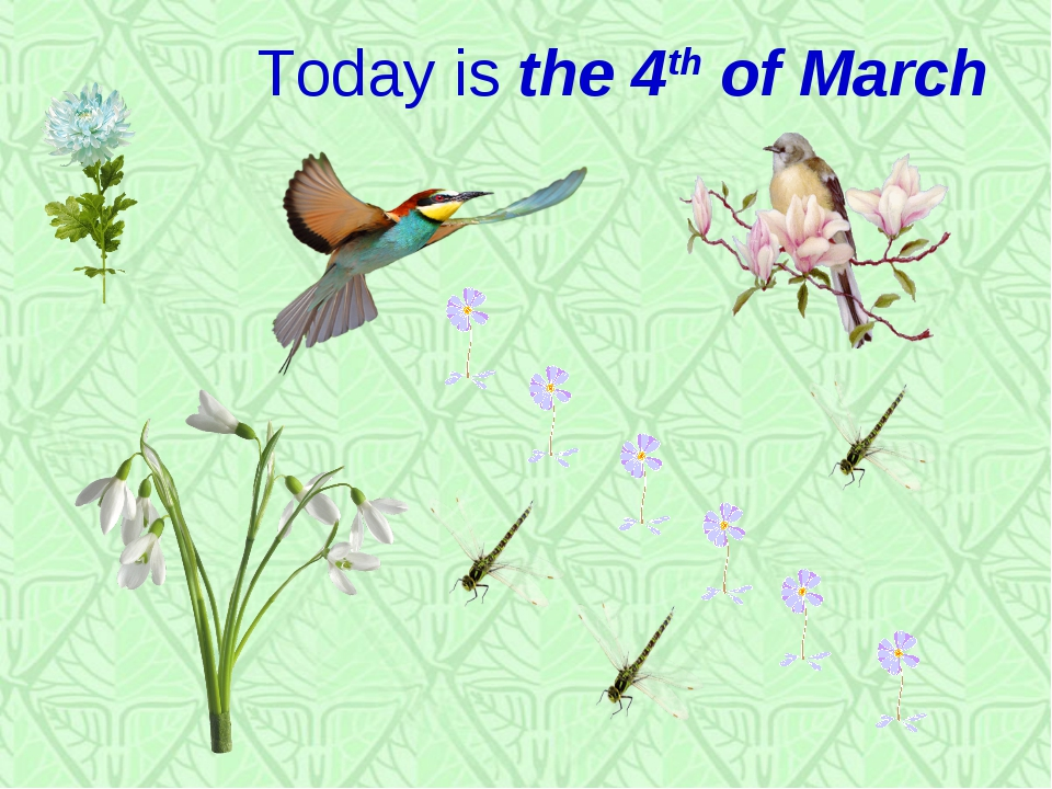 Today is the 4th of March