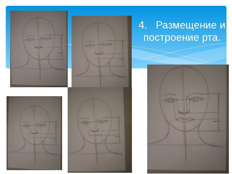 4. Размещение и построение рта.